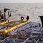 Non-Articulating Sub-Mar Mat Handling Frame sitting on Mats